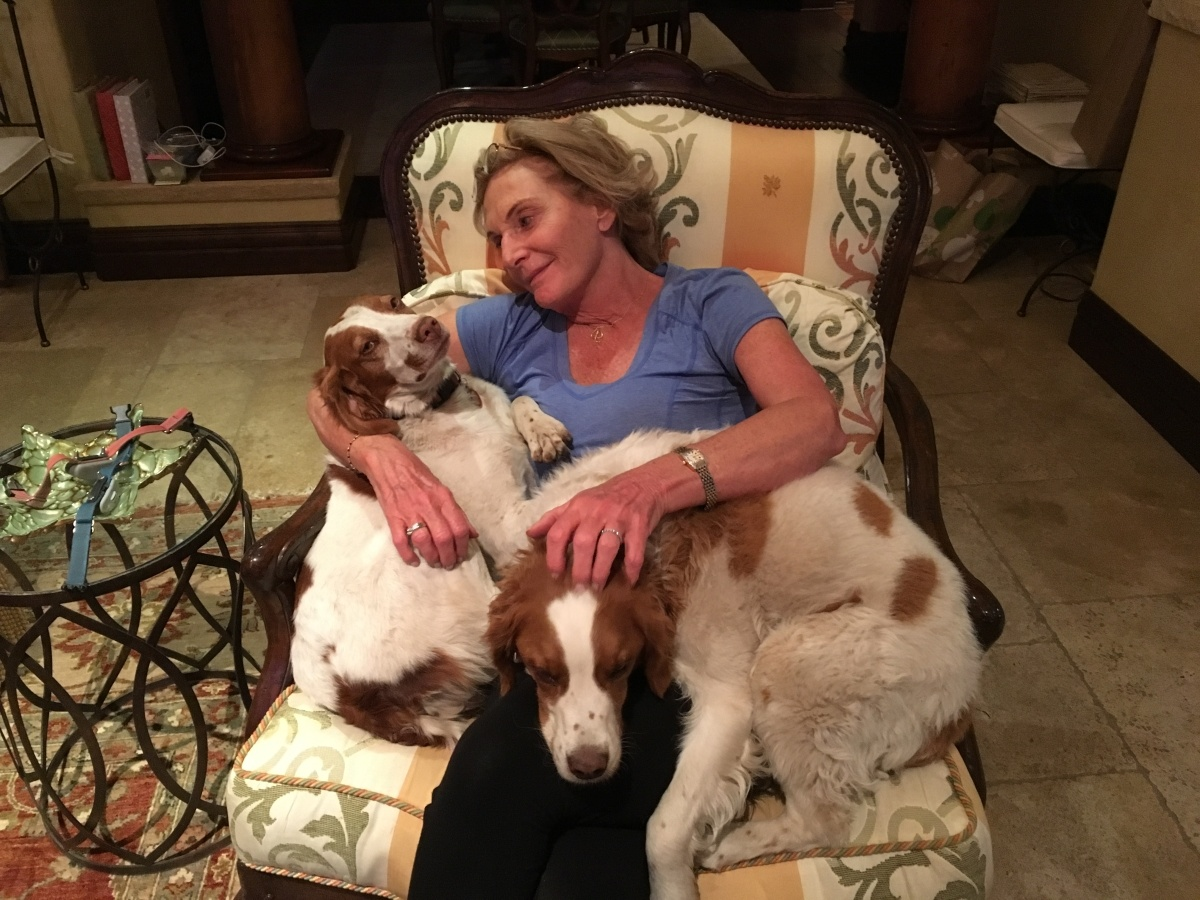 Margot and Dogs
